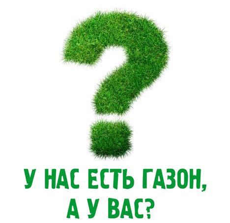Часто задаваемые вопросы о газонах